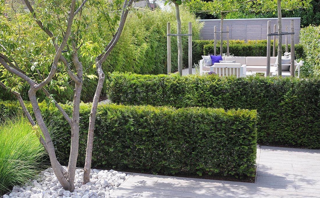 Strakke moderne tuinen tuinarchitect modern strak for Tuinontwerp kleine tuin strak