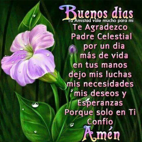 Buenos días.  Te agradezco Padre Celestial por un día más de vida en tus manos dejo mis luchas mi necesidades mis deseos y esperanzas porque sólo en Ti confío amén
