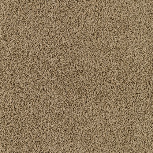 Zoomed Stainmaster Solid Frieze Carpet Wholesale Carpet