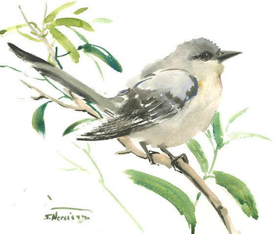 "Mockingbird, original watercolor painting 10"" x 8"", Arkansas and Florida State birds, gray birds, bird lover  $27.00"