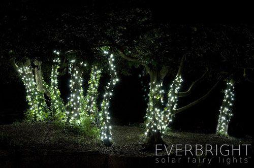 Everbright Solar Fairy Lights Solar Powered Led Lights Available