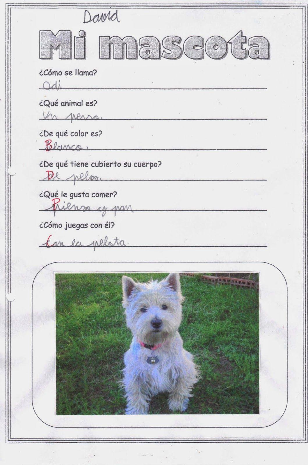 ficha sobre nuestras mascotas. Nos sirve para aprender a describir ...