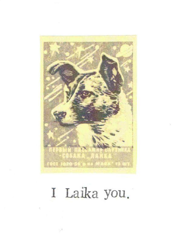 I Laika You Card