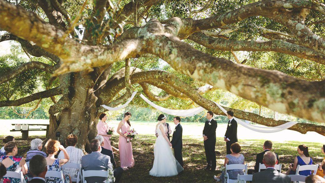 Fernbank Farm Central Coast Wedding Venue Central Coast Farm Fernbank Venue Wedding In 2020 Coast Wedding Central Coast Wedding Venues Tree Wedding Ceremony