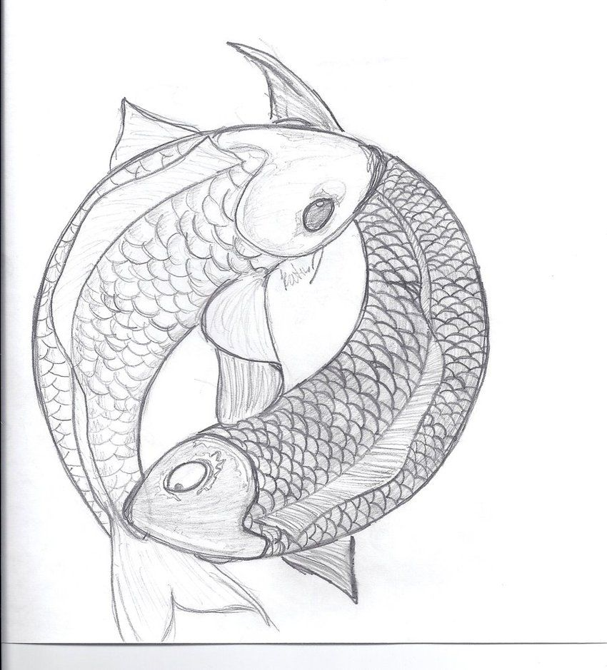 Yin and yang koi fish by miss lunax13 on deviantart tatuaggi yin and yang koi fish by miss lunax13 on deviantart publicscrutiny Image collections