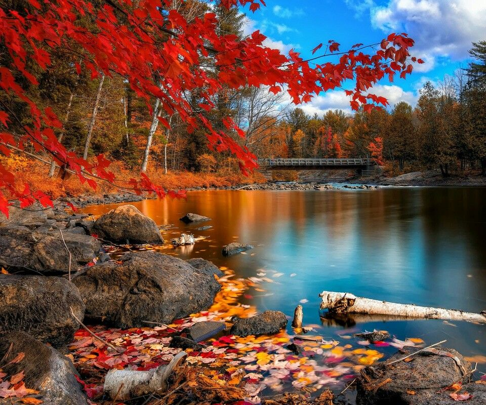 Lake View Of Fall S Changing Colors Autumn Scenery