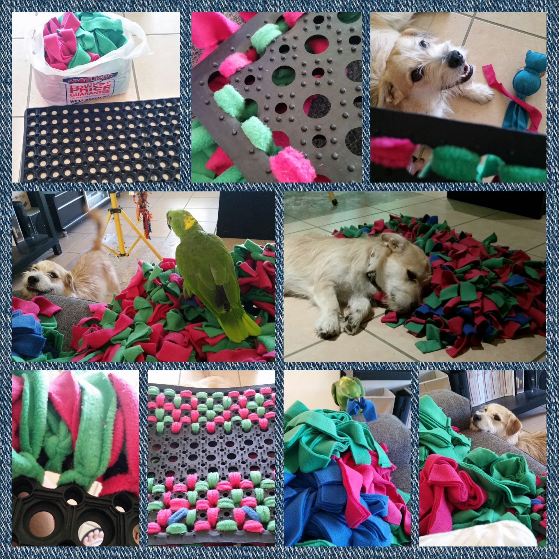 Snuffle Mat From All Pet's Education And Training