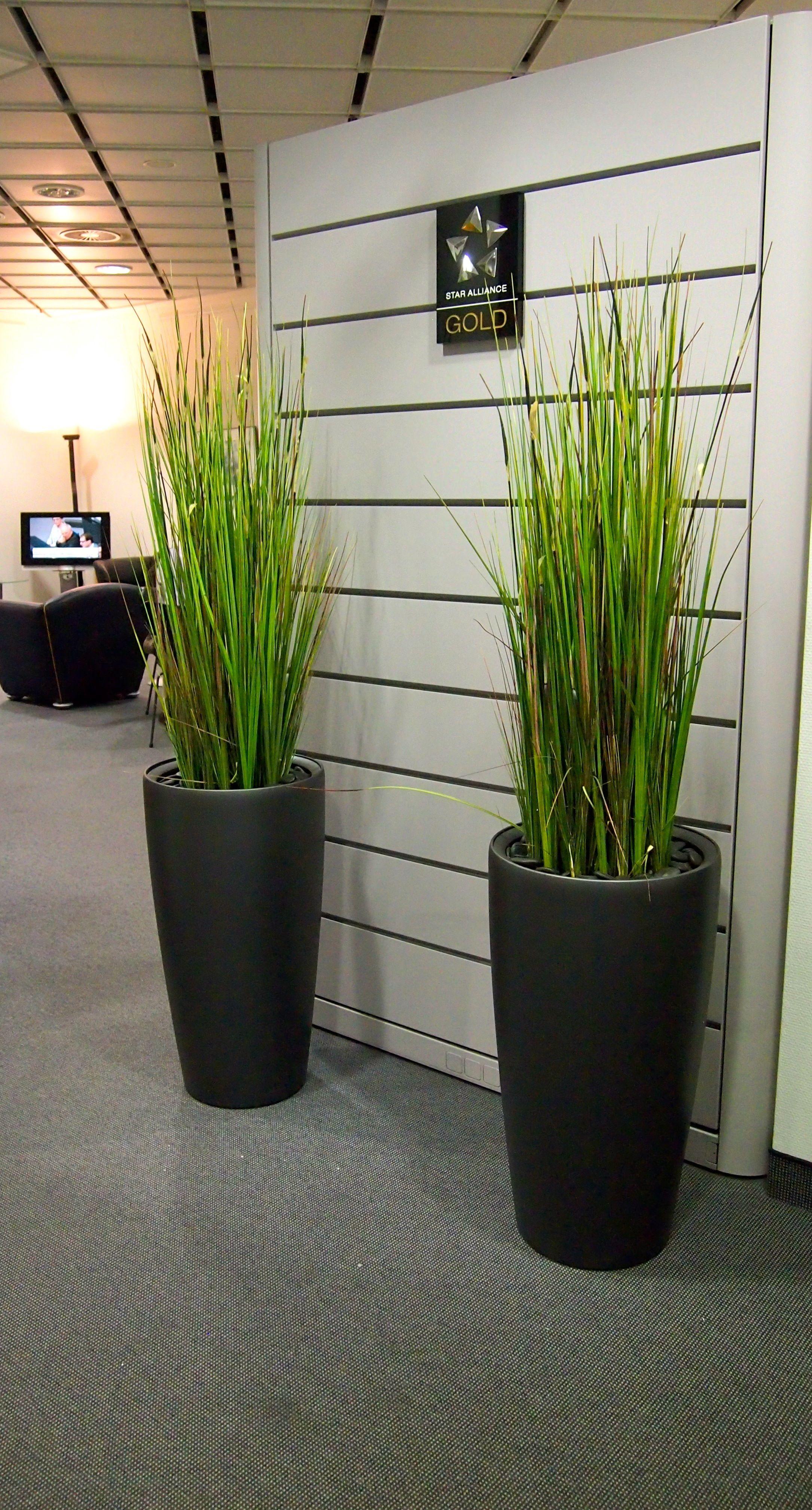 Kunstliche Raumgestaltung Von Bellaplanta Innovative Innenraumbegrunung Kunstpflanzen Arrangement Buroraum Kre Kunstliche Pflanzen Kunstpflanzen Pflanzen