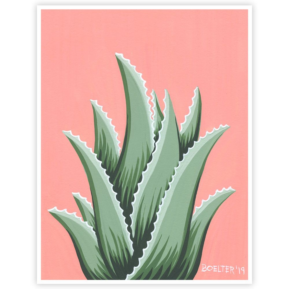 Aloe You Very Much #02 | Signed Art Print | Boelter Design Co.