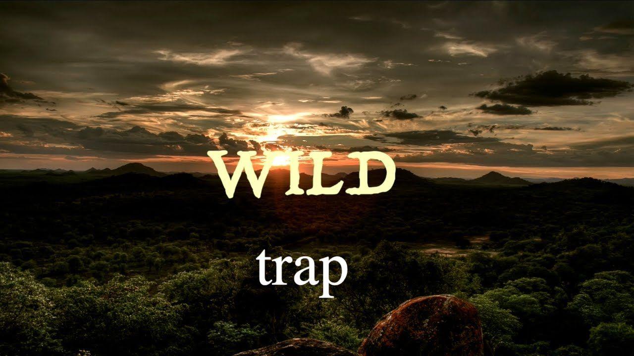 WILD trap (Audio) YouTube Traps Healthy fruit