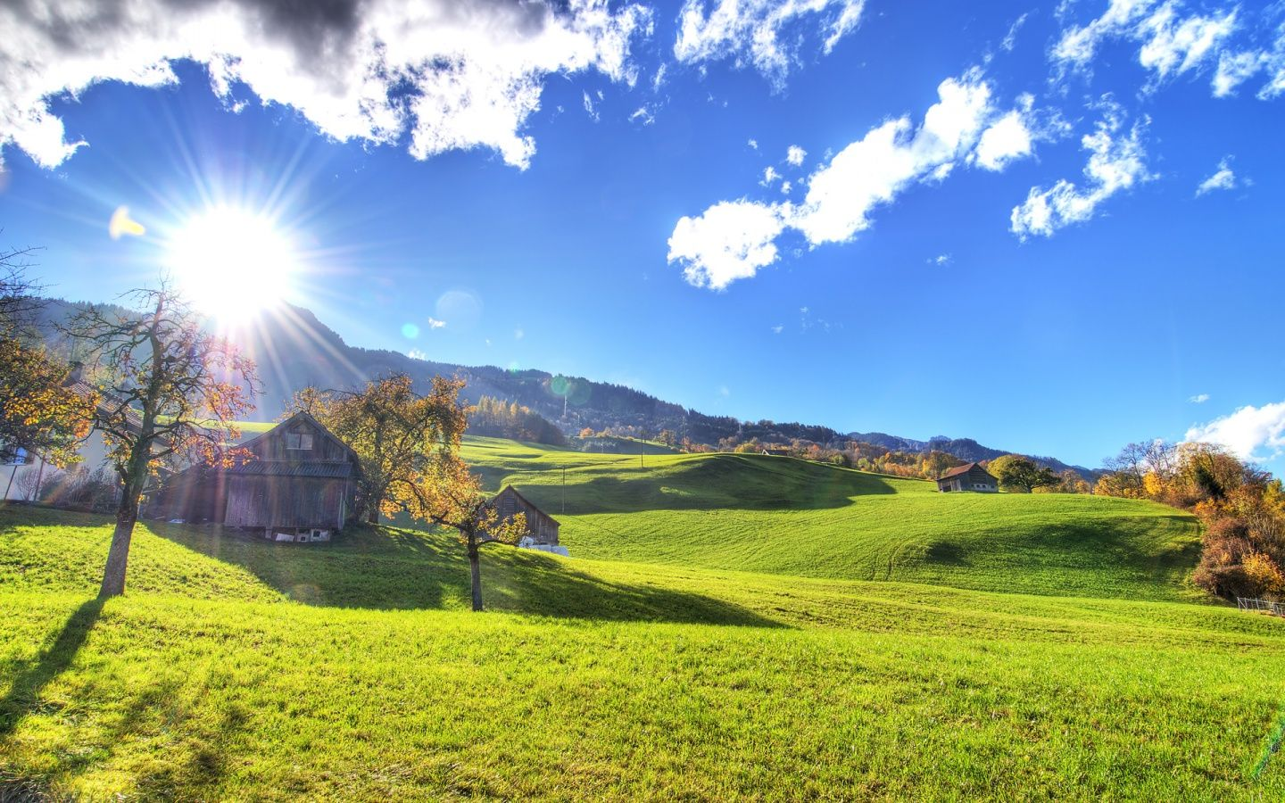 A bright sunny day on the farm. | Sunrise photos, Background hd wallpaper,  Sunny pictures