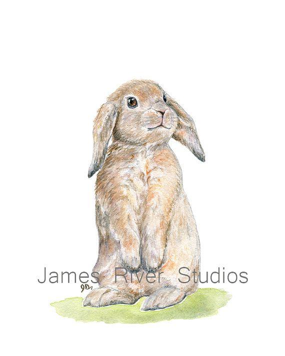 Bunny Painting Bunny Print Bunny Watercolor Bunny Art Bunny Etsy Bunny Watercolor Bunny Painting Bunny Art