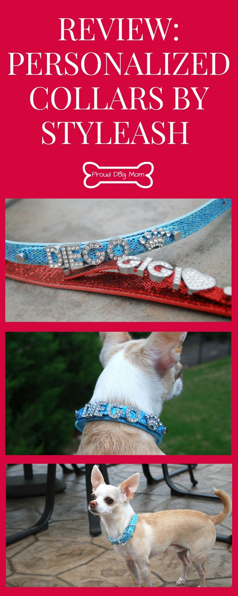 Review Personalized Collars By Styleash Shop Personalized Collar Dog Product Review Dogs