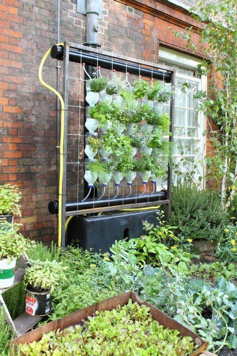 26 Simple Hydroponic Garden Ideas For Good Alternative 640 x 480