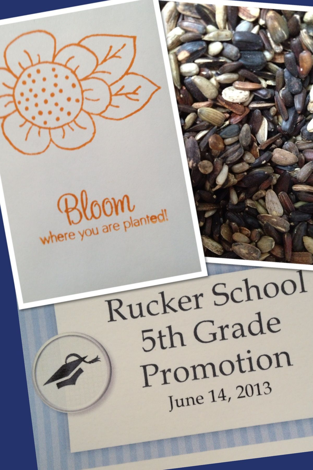 """bloom where you are planted"""" seed packet favors made for fifth"""