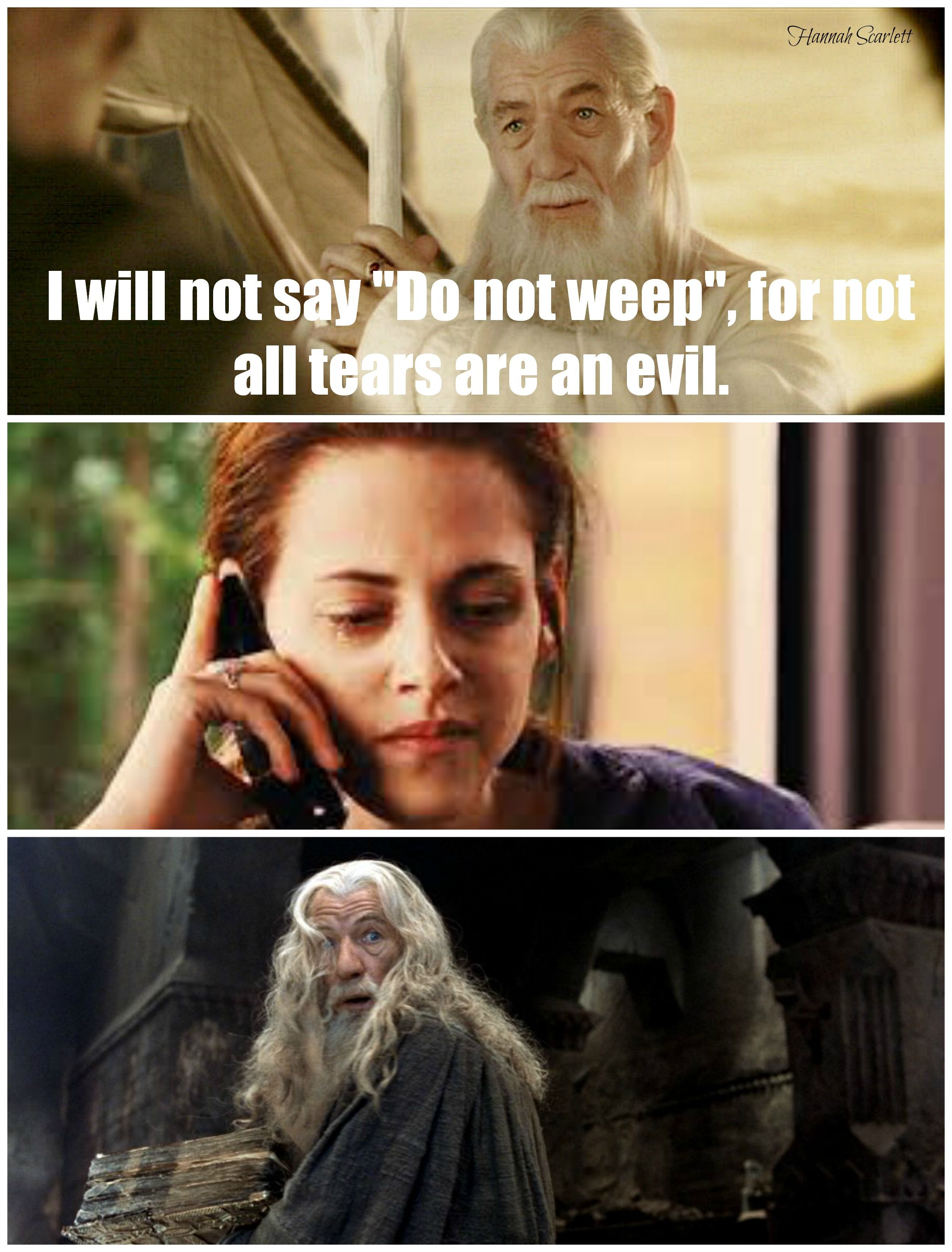 Lotr Twilight Meme