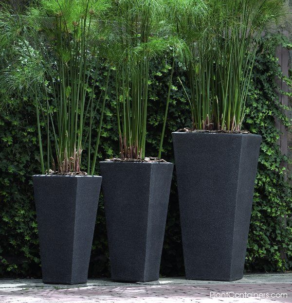 Modern Garden Planters : Best Modern Planters U2014 Your Home Design .