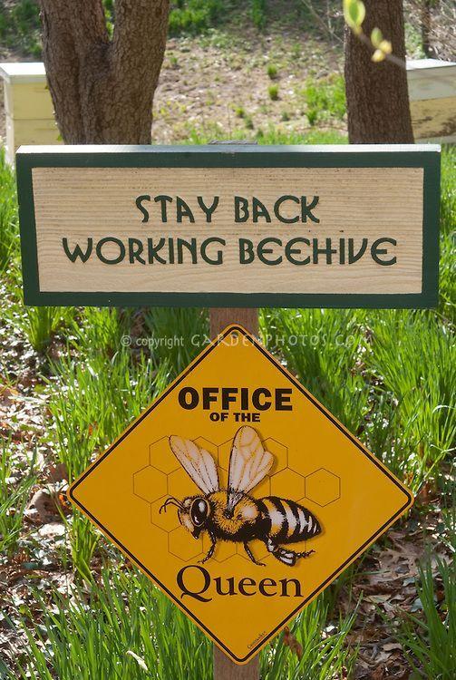 Sign Near Bee Hives Orders Of The Queen Bee Garden