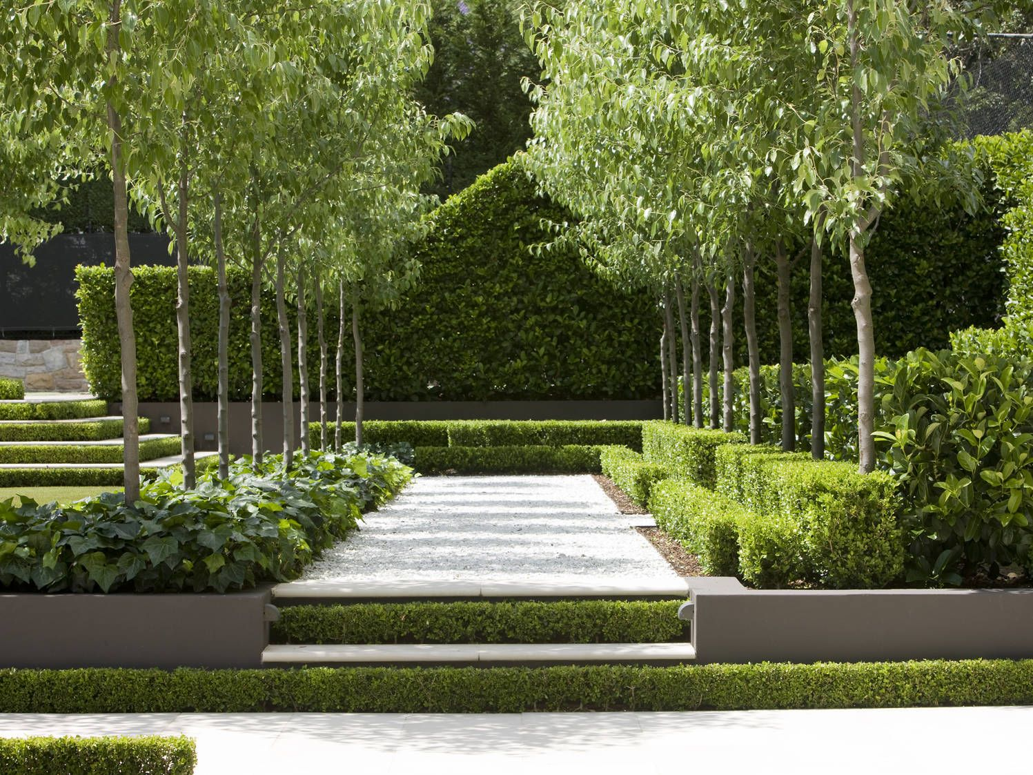 in this contemporary formal garden  shaded by pear trees  simplicity and restraint is used in