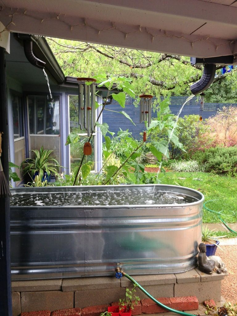 Rainwater Collection At Work hydroponicgardening