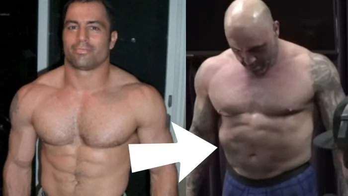 Joe Rogan S Bubble Gut Could Be Due To Insulin Resistance Says Leading Cardiologist Vegan News Plant Based Living Joe Rogan Insulin Resistance Vegan News