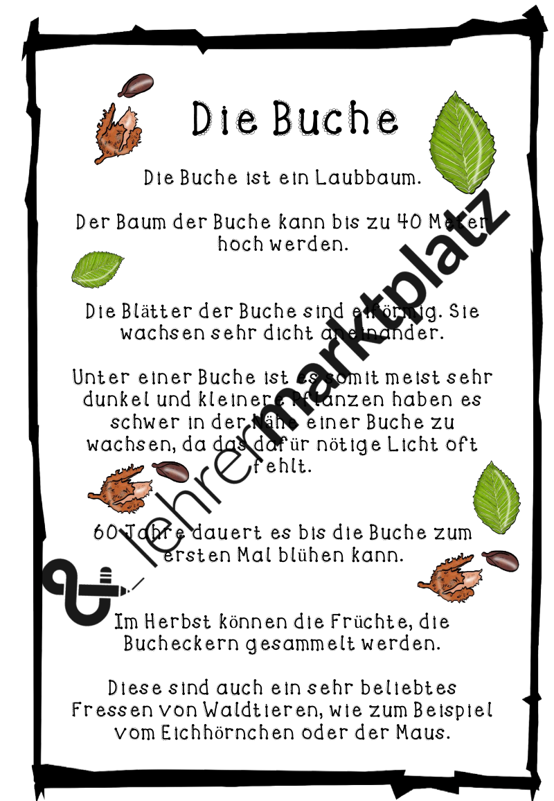 Laubbäume - Werkstatt ab Klasse 1 – Sachunterricht | Sachunterricht ...