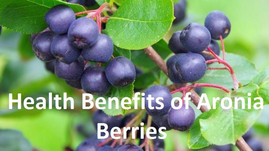 Fructul de açaí - beneficii si proprietati! - DolceFarVerde