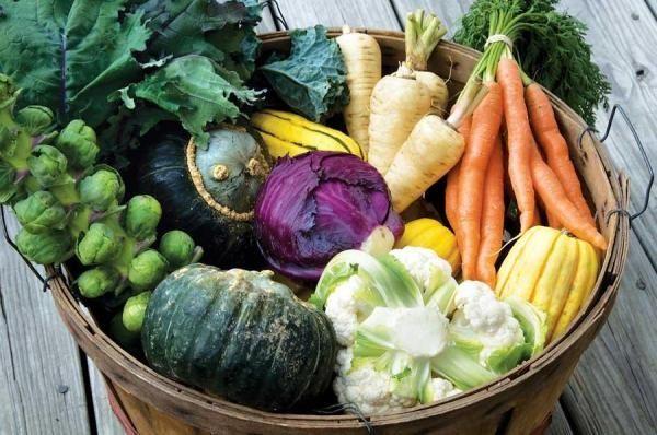 Hilfreiche Tipps, Wie Sie Im Herbst Ein Gemüsebeet Anlegen Können ... Garten Im Herbst Tipps Ideen