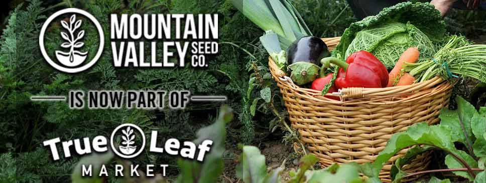 Mountain Valley Seed Co. Products - True Leaf Market ...