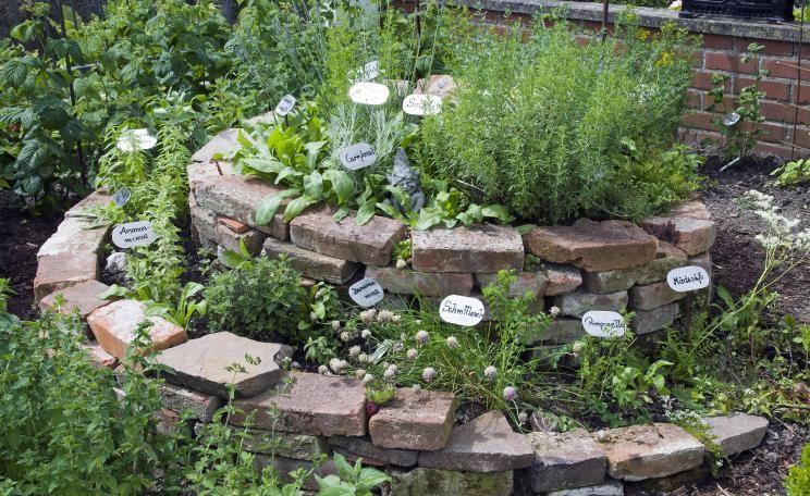 Bauanleitung Fur Eine Krauterspirale Krauterspirale Bepflanzen Garten Pflanzen Krautergarten Anlegen