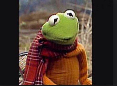 Pin Em Kermit The Love Of My Life