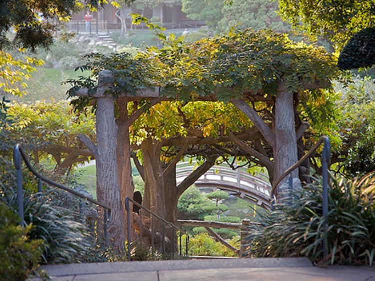 The Best Botanical Gardens And Hidden Oases In Los Angeles Huntington Library Beautiful Places Nature Botanical Gardens