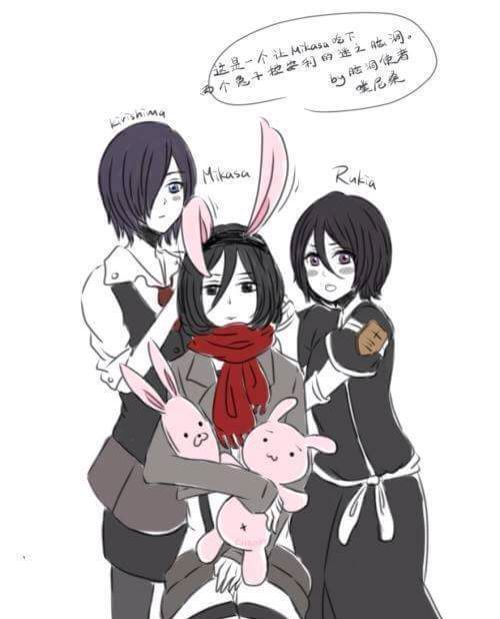 Touka And Rukia Trying To Get Mikasa Into Rabbits Lol Xd With