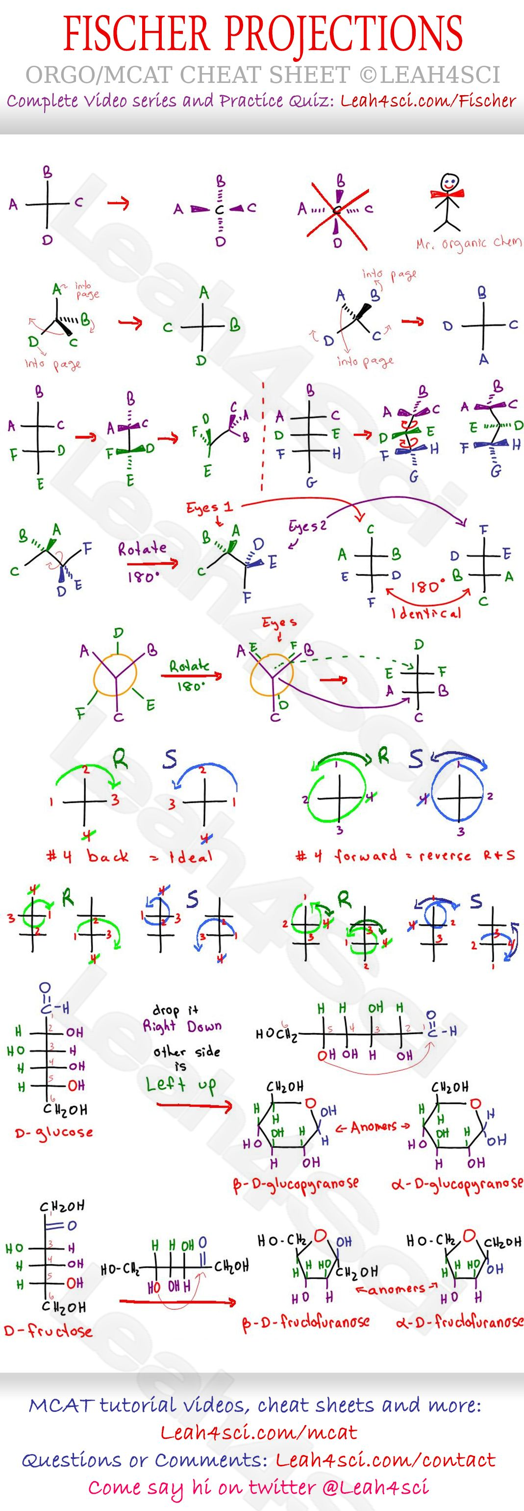 Fischer Projections Cheat Sheet Study Guide draw and
