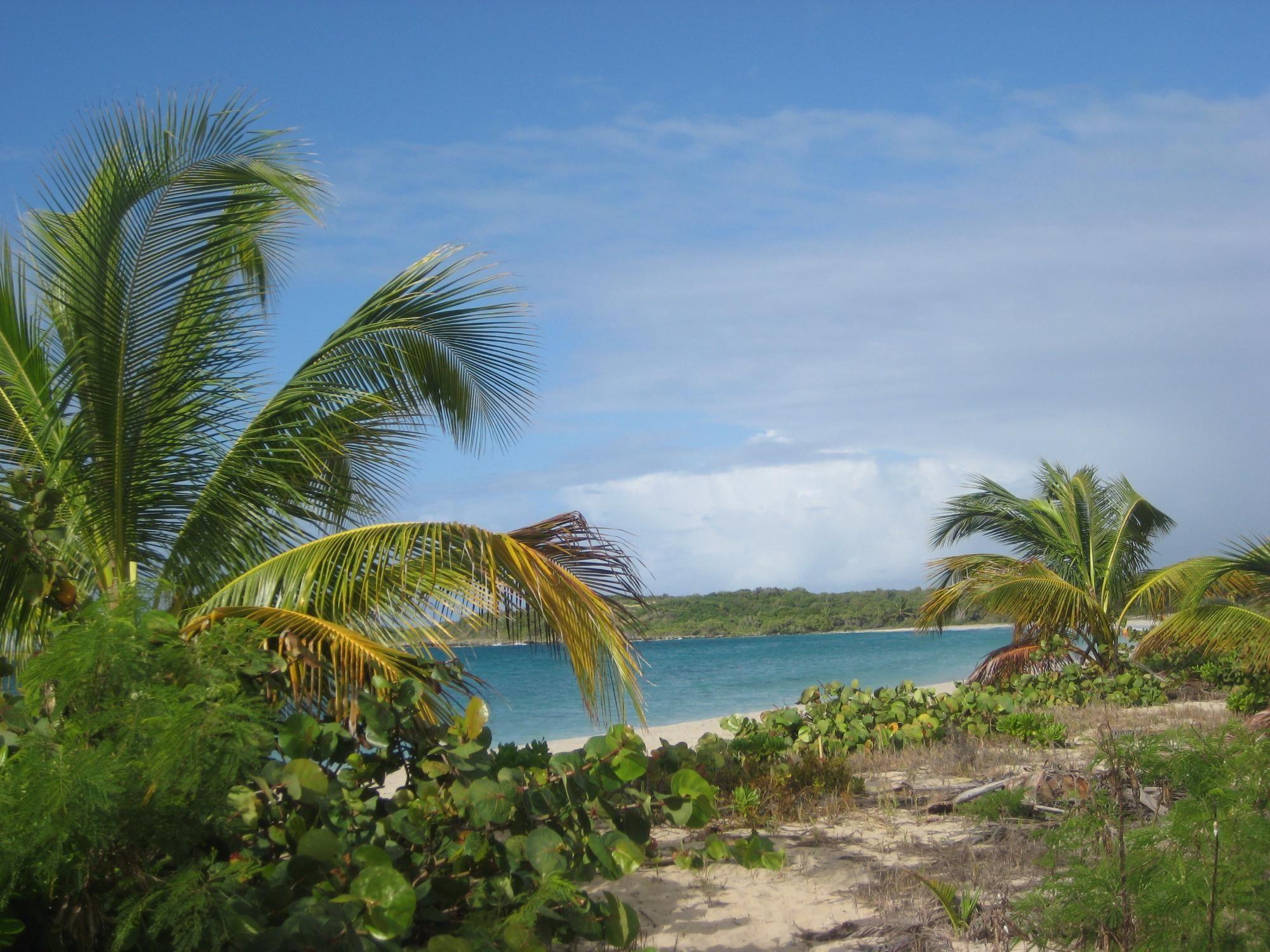 Blue Beach Isla De Vieques Puerto Rico Address