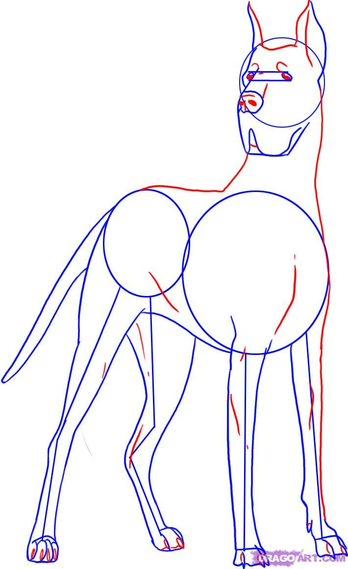 How To Draw A Great Dane Dog Step 4 More
