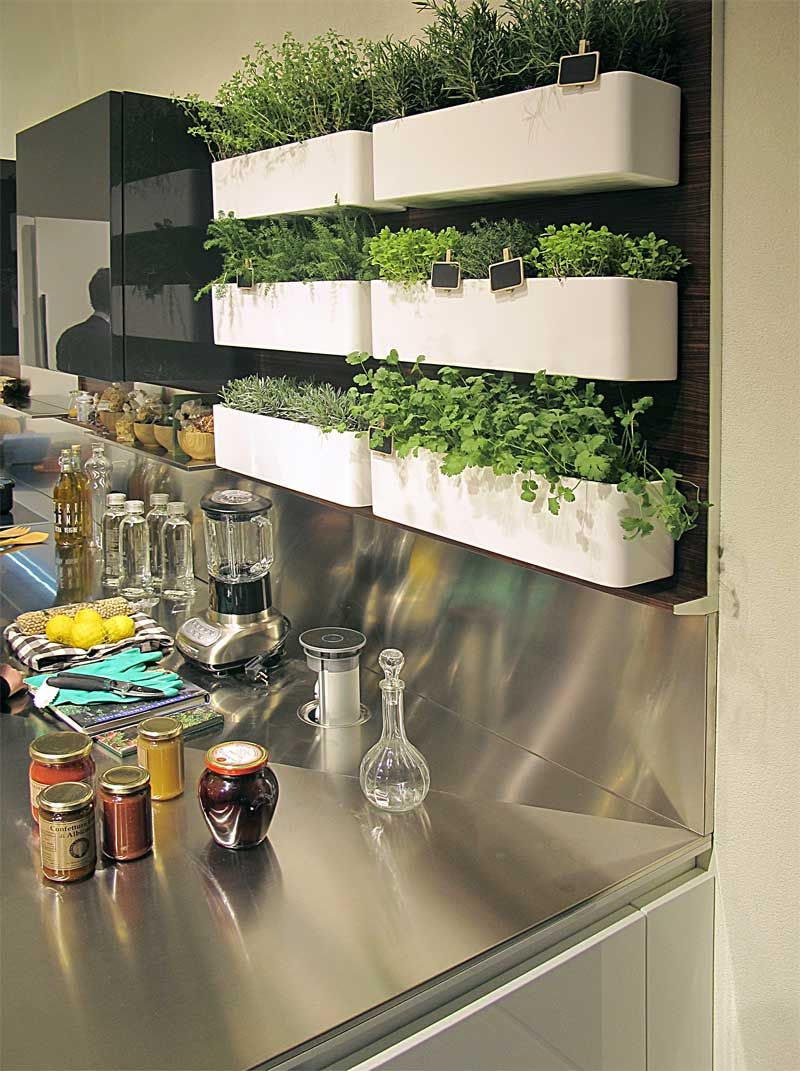 Perfect little compact herb garden right in the kitchen. Doing ...