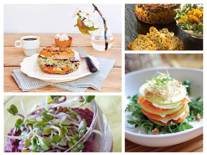 Recettes de cuisines base de graines germ es fra ches - Cuisiner les girolles fraiches ...