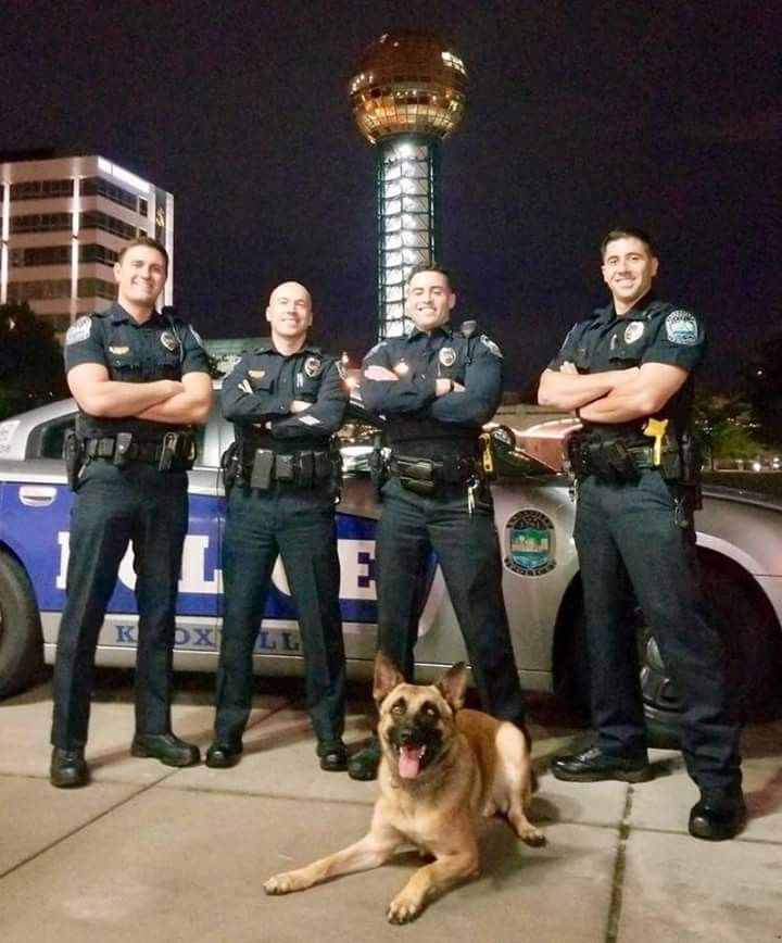 There S No Denying The Gainesville Police Department Has Set The Internet On Fire With A Picture Of Three Of Their Officers Police Dogs Military Dogs Hot Cops