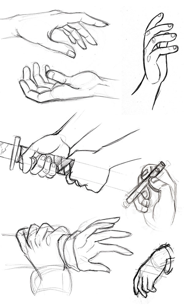 Human Anatomy Fundamentals How To Draw Hands In 2020 Human Drawing How To Draw Hands Human Anatomy Art