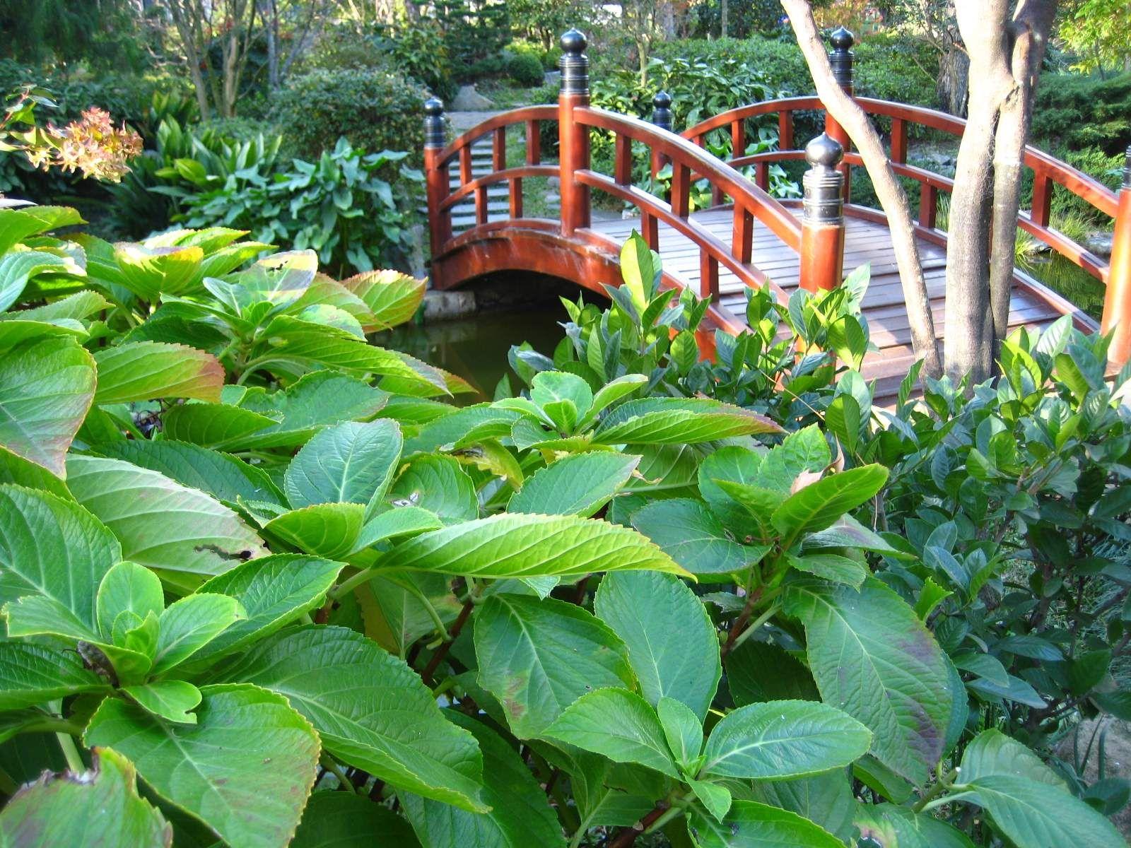 Jardín Japonés, Montevideo, Uruguay.