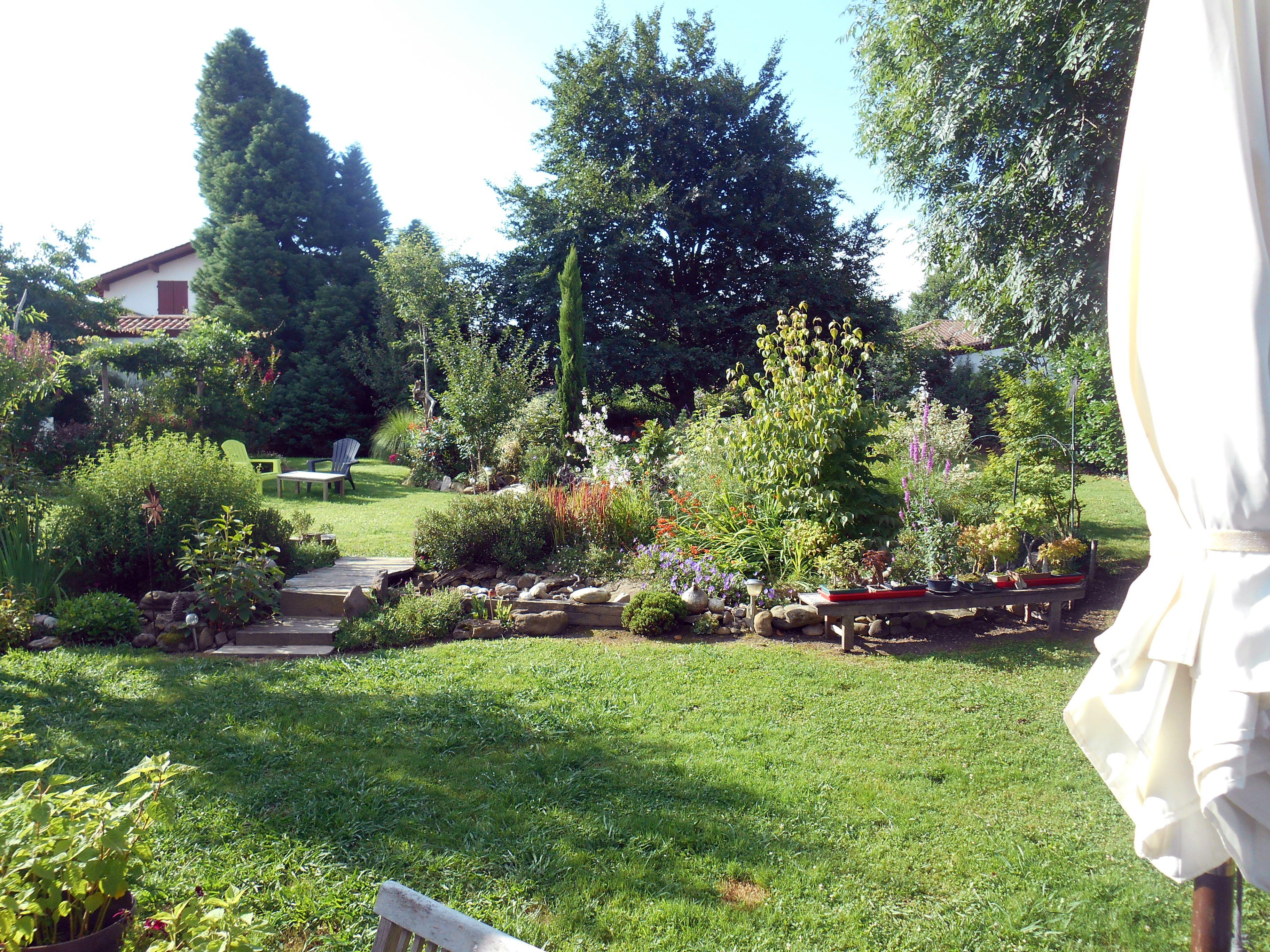 le jardin juillet 2017 lanoki pinterest juillet le jardin