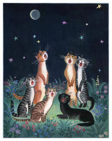 Gatos cantándole a la luna