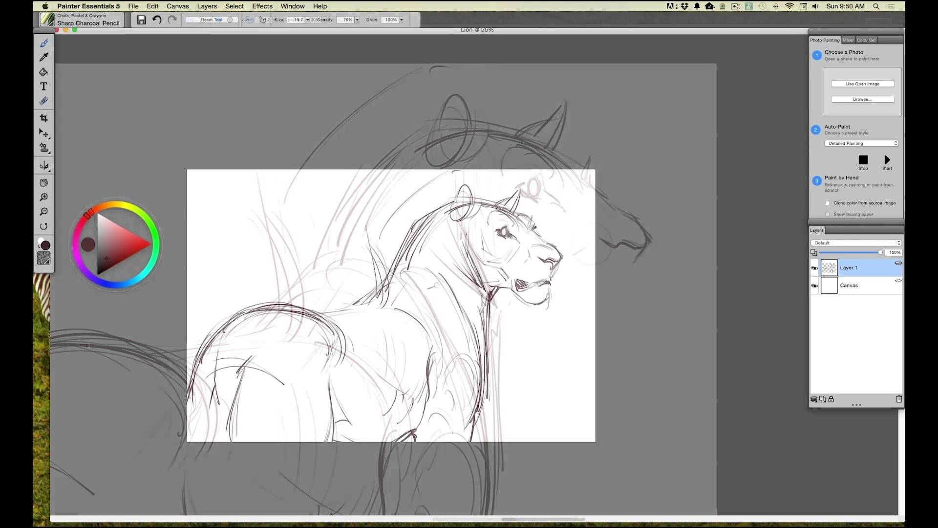INTUOS ART Rough Drawing in Corel Painter Essentials with