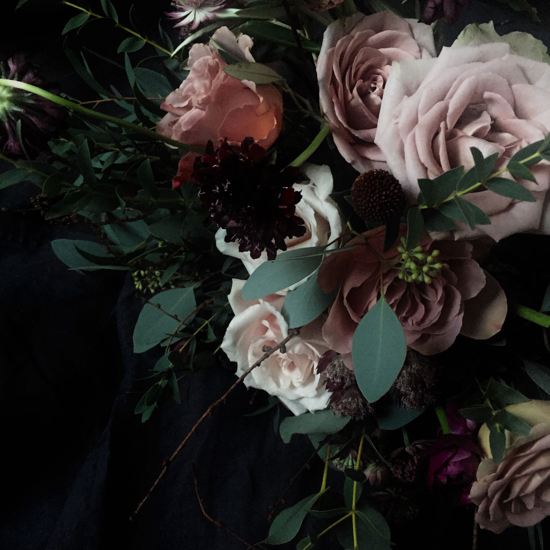Pin By Julie Reid On A Curious Arrangement Plants Stuffed