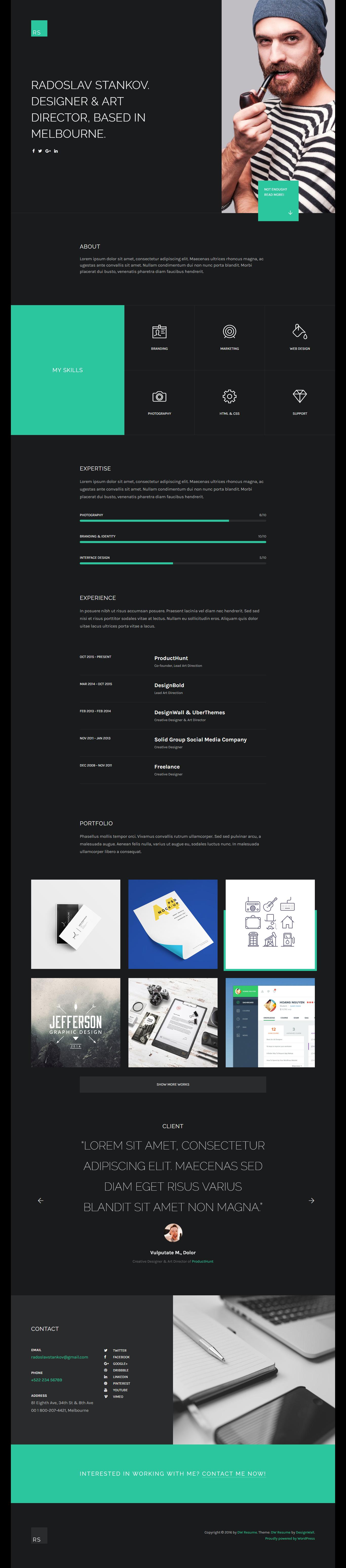 Responsive WordPress CV & Portfolio Theme DW Resumé