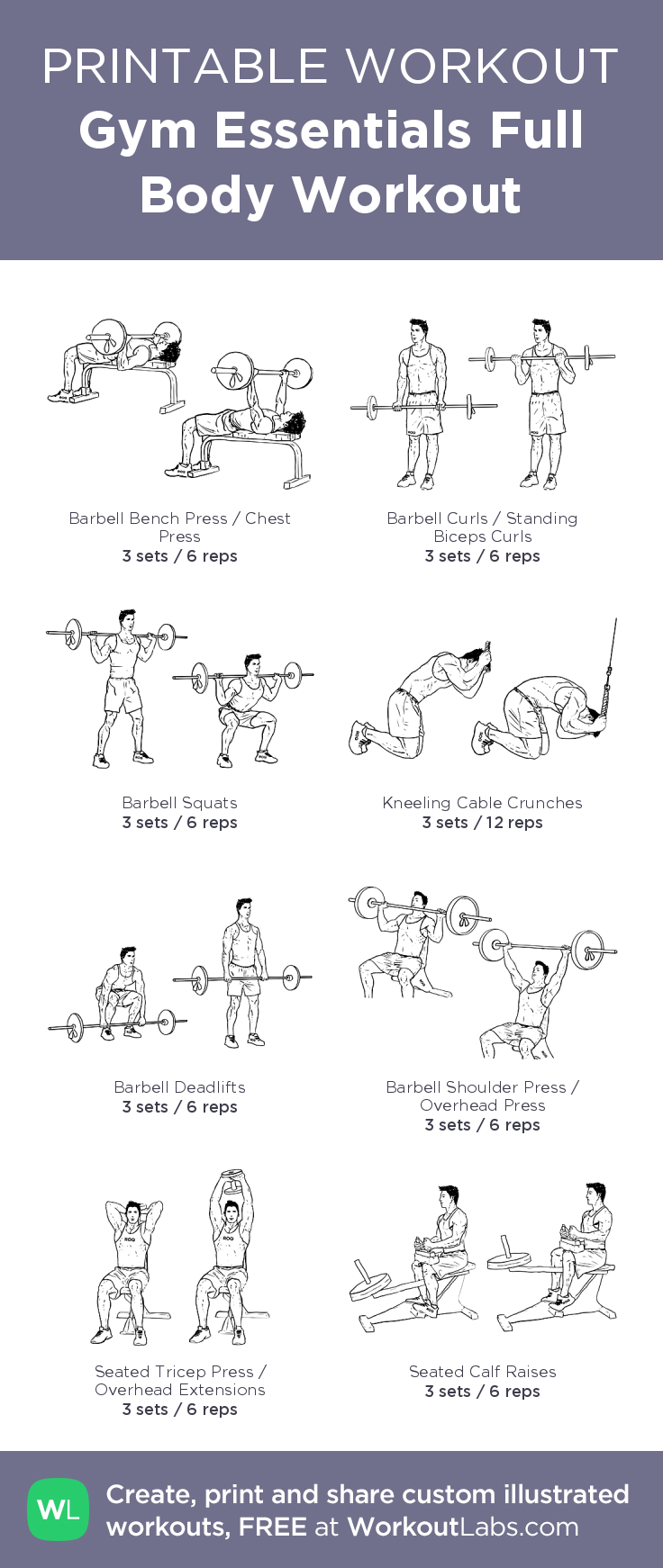 Gym Essentials Full Body Workout Illustrated Exercise Plan Created At WorkoutLabs O Click For A Printable PDF And To Build Your Own Customworkout