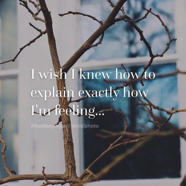 I wish I knew how to explain exactly how I'm feeling...