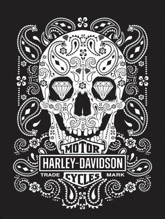 Jcrewing Necklace Bracelets Fashion Harley Davidson Art Harley Davidson Wallpaper Harley Davidson