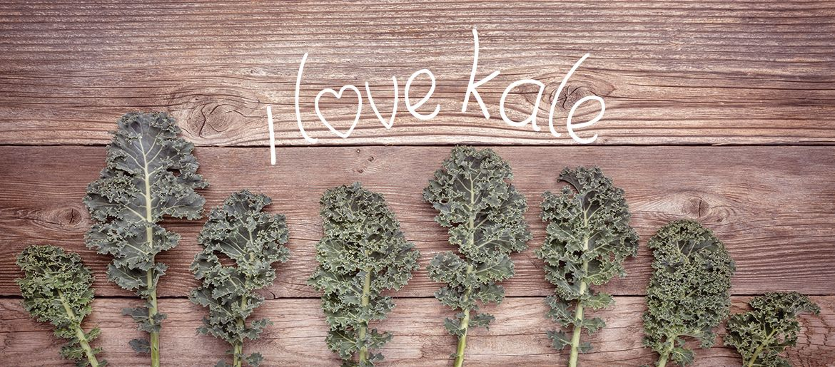 My Love of Kale - http://www.thinkhealth-thinkfitness.com/my-love-of-kale/